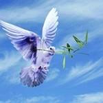 دین و زندگی؛ پر نکته، سهل و ممتنع